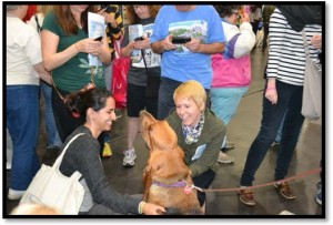 2MEETTHEBREEDS2012article-docformat