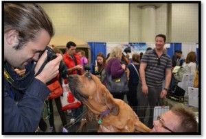 3MEETTHEBREEDS2012article-docformat