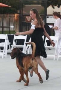 5karissa-groves-1st-bloodhound-national