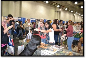 6MEETTHEBREEDS2012article-docformat
