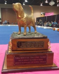 Tara trophy