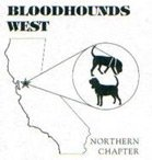 bloodhound-west