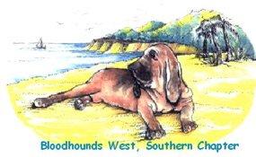 Southwest Regional Club