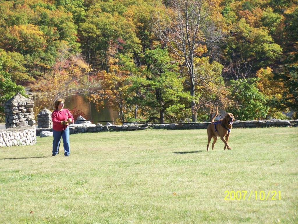 Hoss and Sue O. trail through a park.