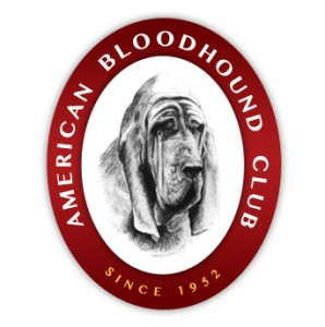 American Bloodhound Club
